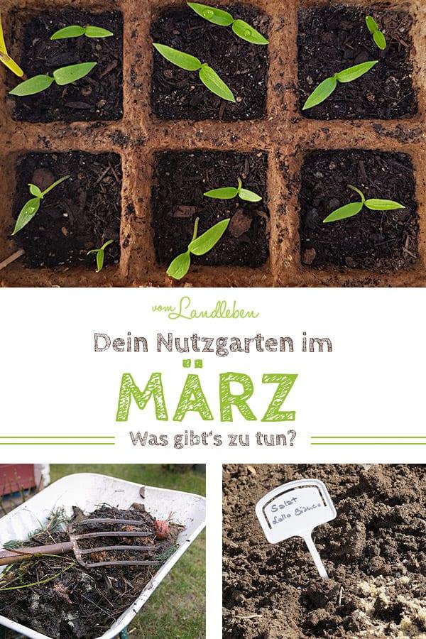 Dein Nutzgarten im März: was gibt es zu tun? Mit Aussaatplan