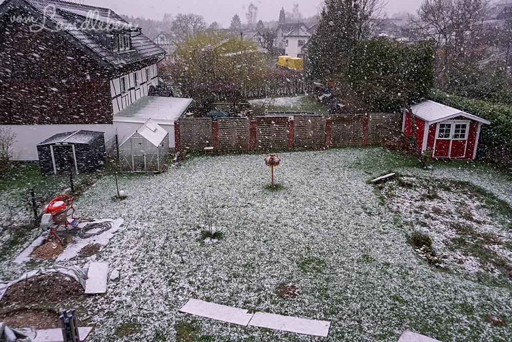 Schnee im März 2019
