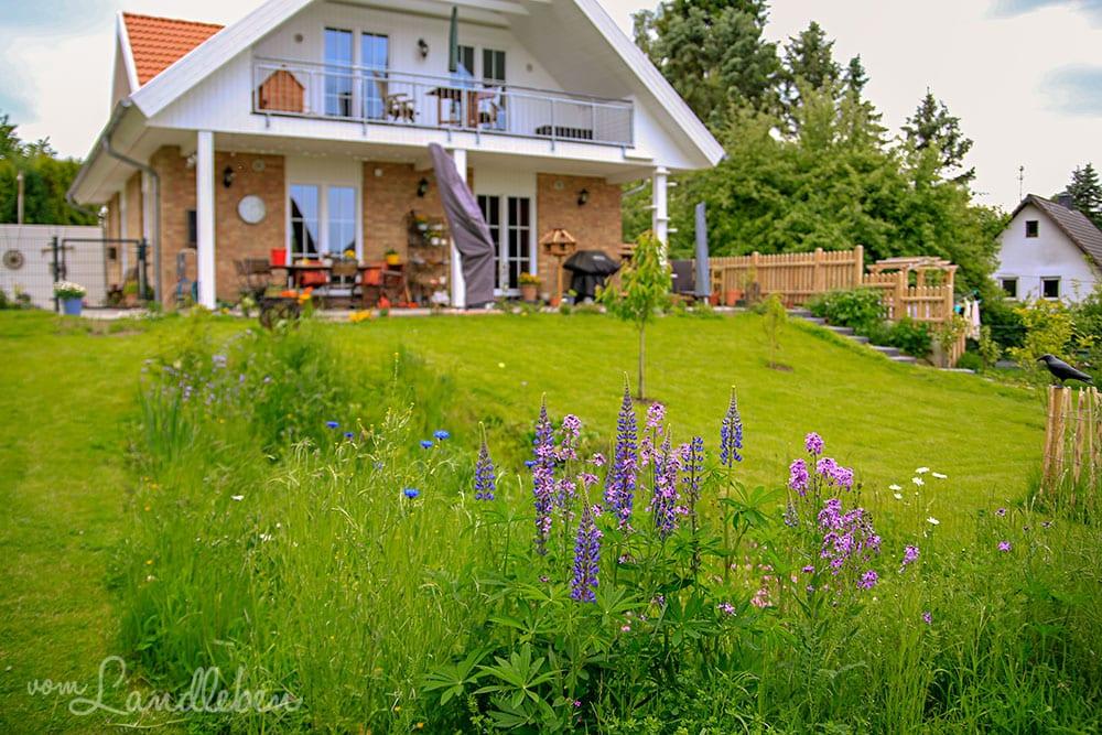 Garten im Mai 2019