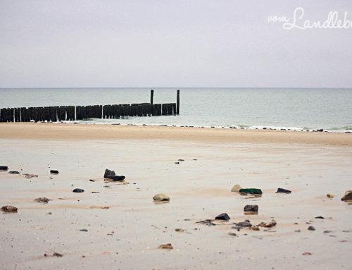 Strandfotos aus Zeeland