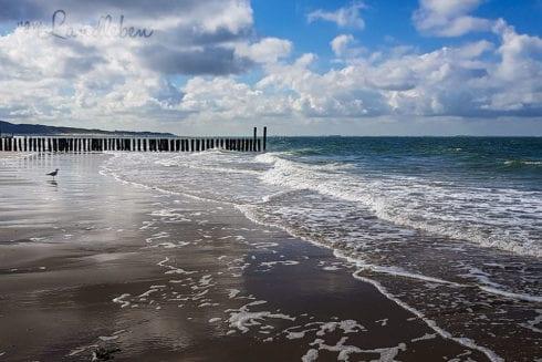 Am Strand in Zoutelande - Juni 2019
