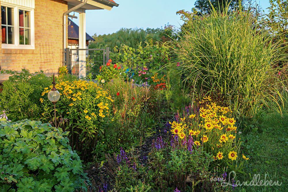 Unser Garten im August 2019