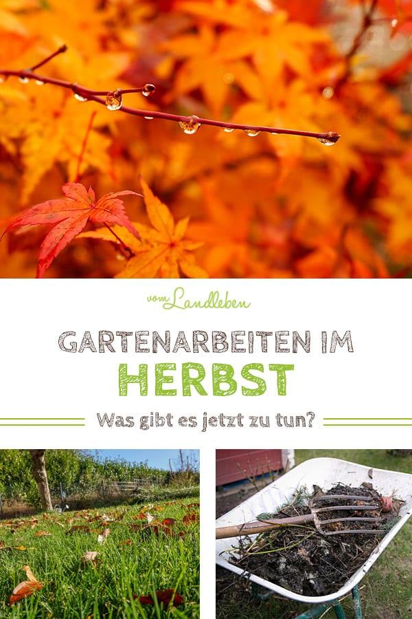 Gartenarbeiten im Herbst: was gibt es jetzt zu tun? Tipps vom Stecken der Blumenzwiebeln über die Rasenpflege bis hin zum Ausbringen vom Kompost