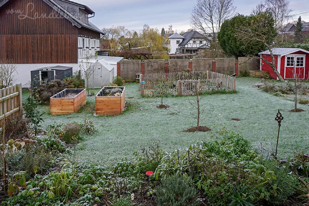 Unser Garten im November 2019
