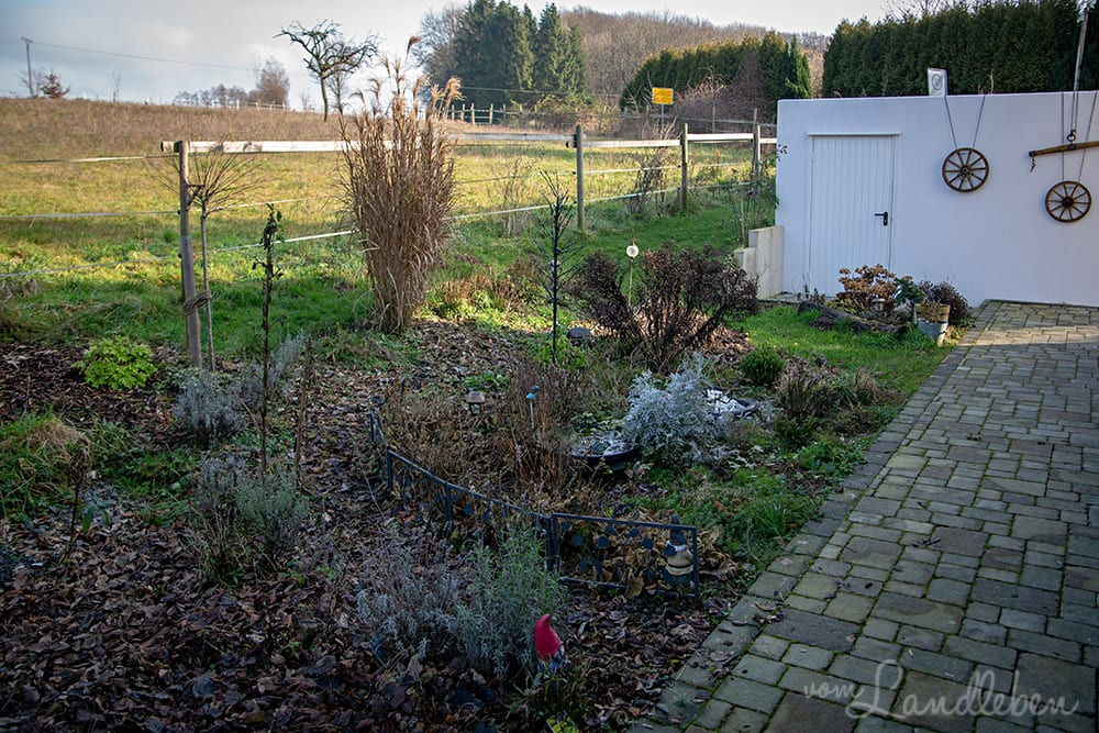 Mittelgarten im Januar 2020