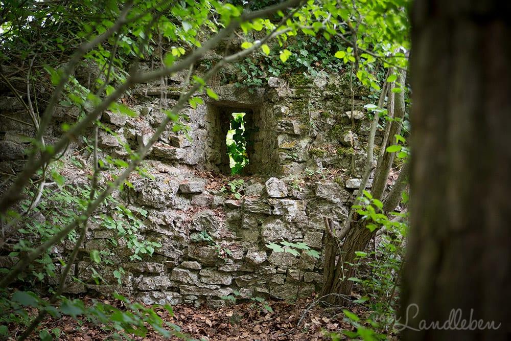 Ruine Hohengerhausen / Rusenschloss