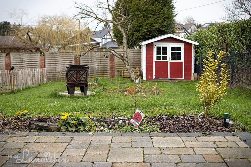 Unser Garten im Februar 2020
