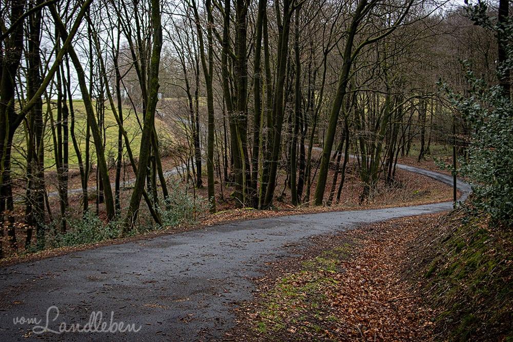Wandern ums Naafbachtal