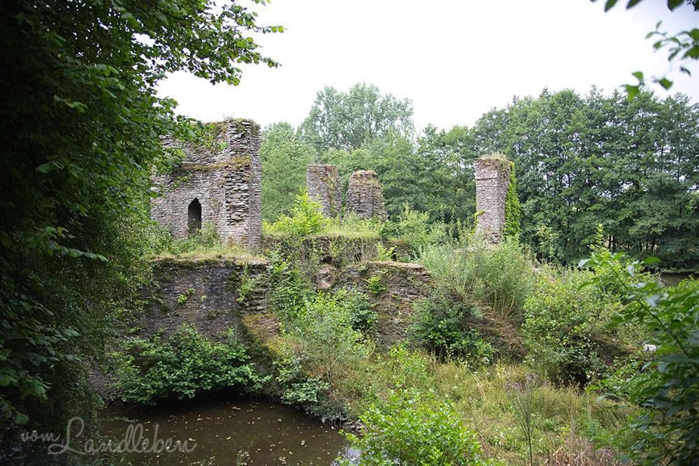 Ruine Eibach