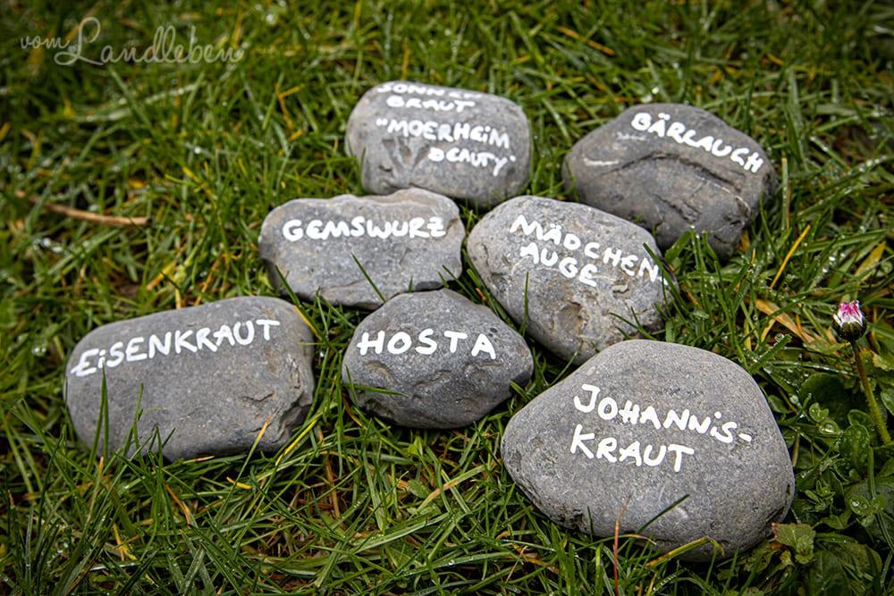 Steine beschriften als Pflanzenschild