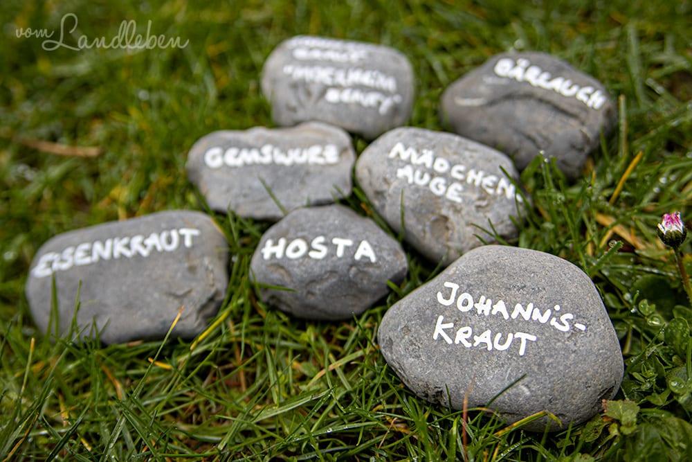 Beschriftete Steine als Pflanzenschilder