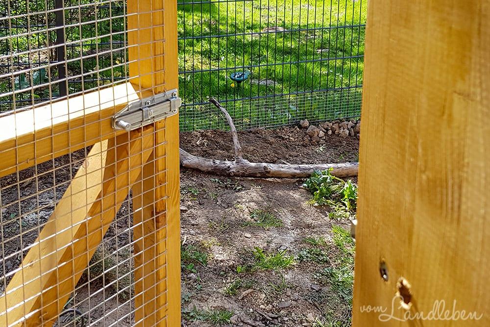 Volierentür am Hühnerstall