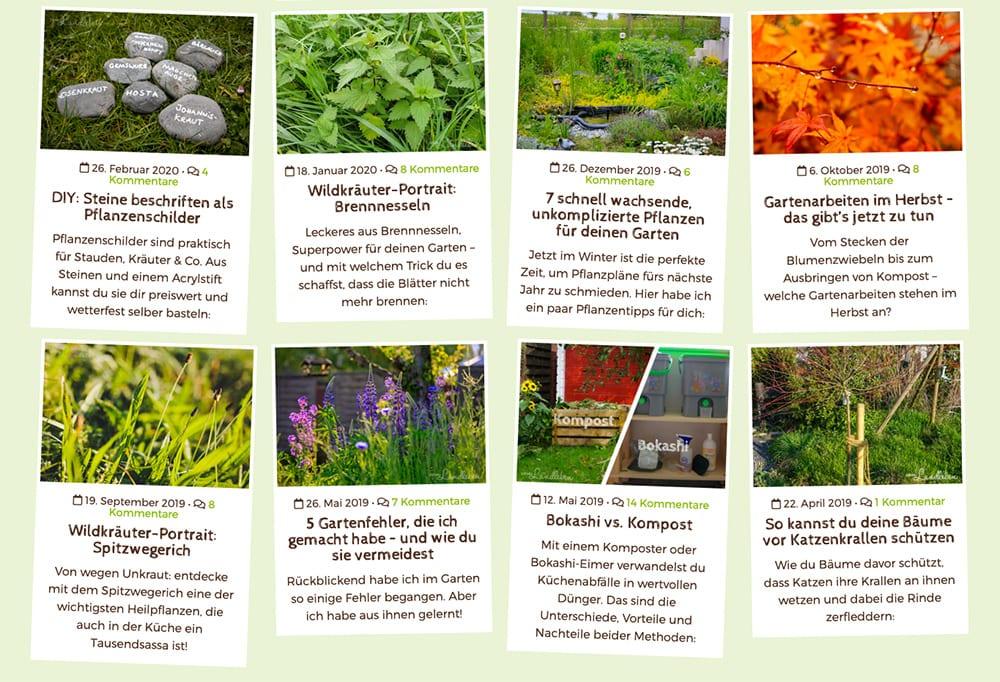 Screenshot: Artikelvorschau auf vom Landleben