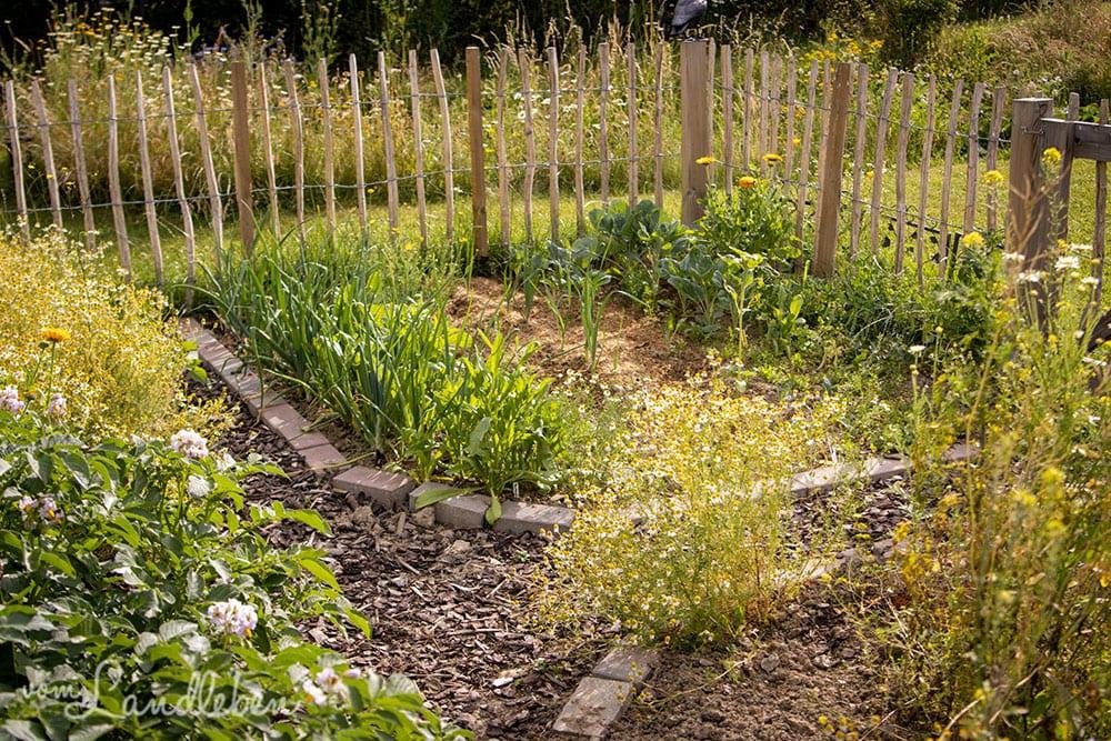 Bauerngarten im Juni 2020
