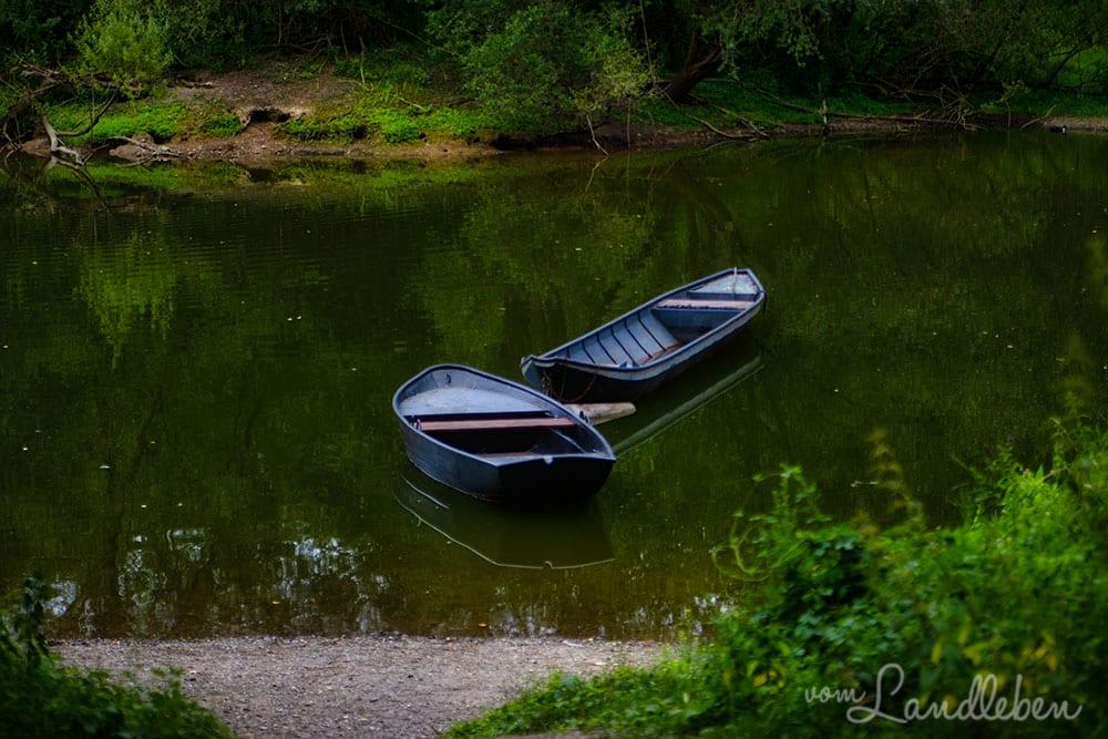 Boote auf der Diescholl