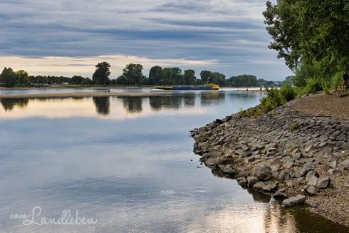 Siegmündung in den Rhein