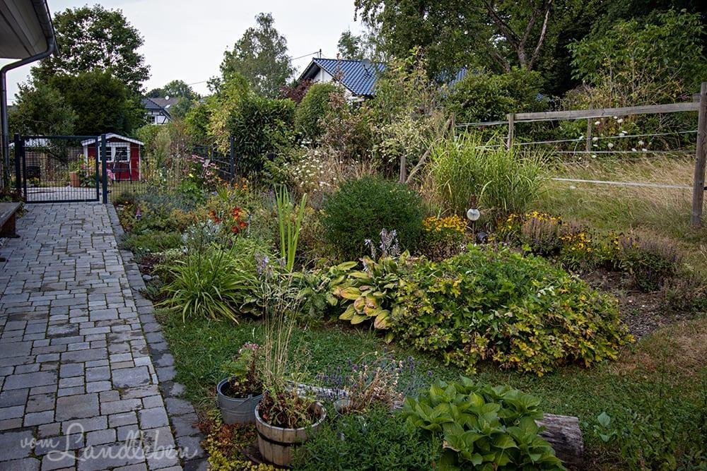 Mittelgarten im August 2020