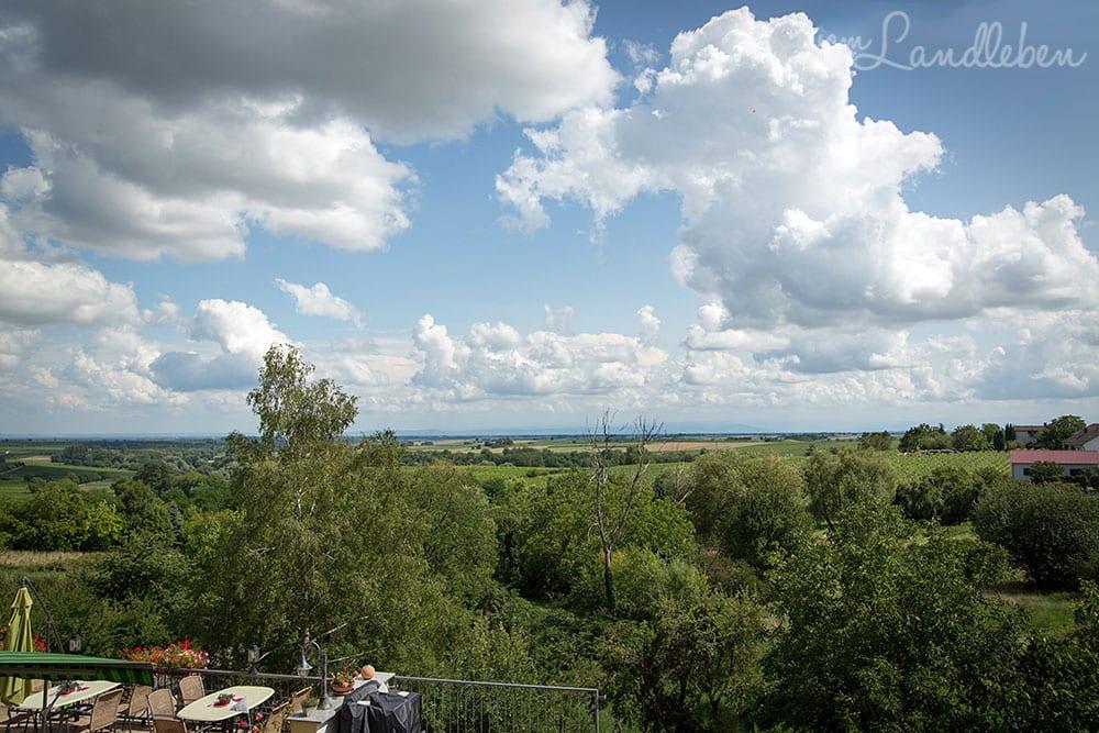 Blick von den Südpfalz-Terrassen über die Rheinebene