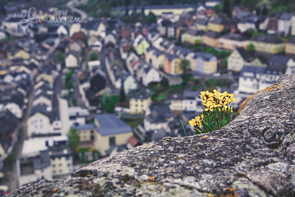Blick über Idar-Oberstein
