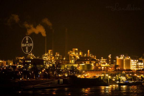 Leverkusen by Night - Bayer-Kreuz