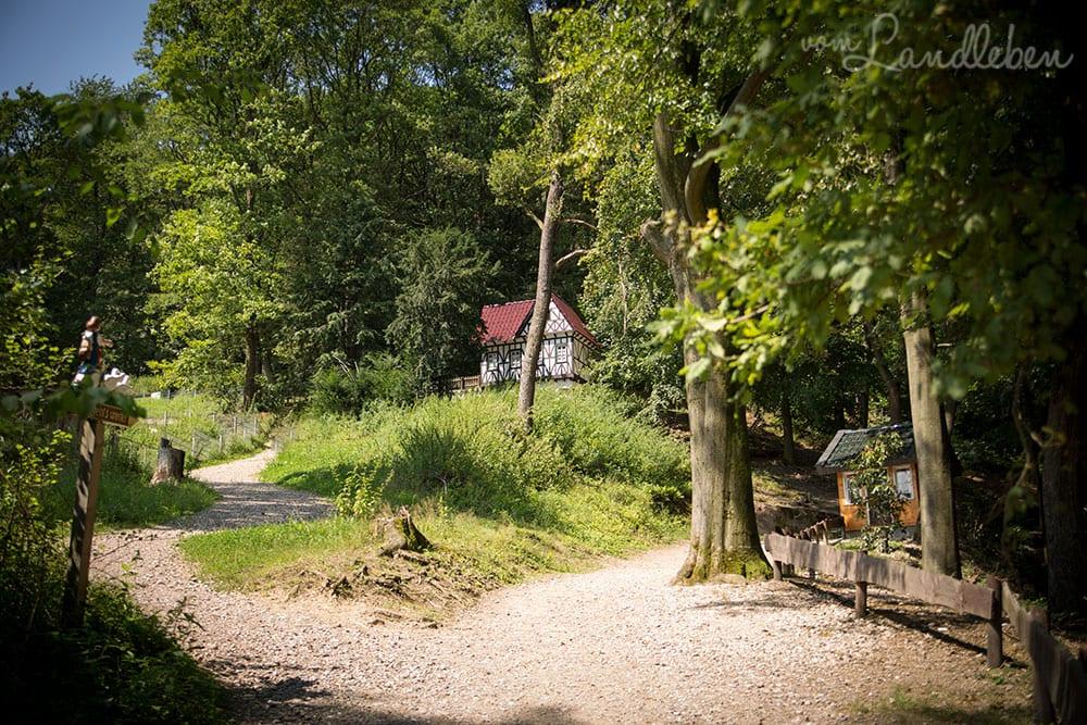 Märchenwald Altenberg