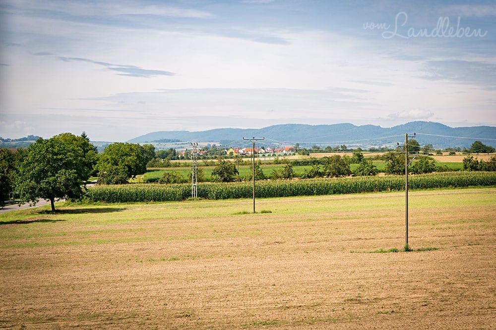 In der Pfalz