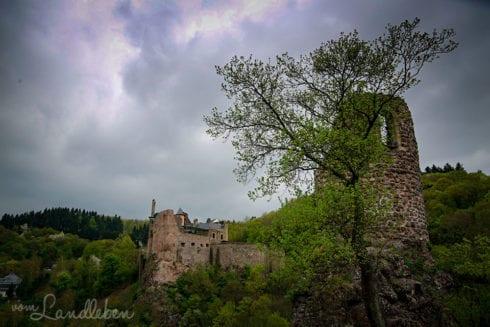 Schloss Oberstein und Burg Bosselstein