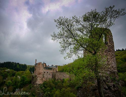 Schloss Oberstein & Burg Bosselstein in Idar-Oberstein