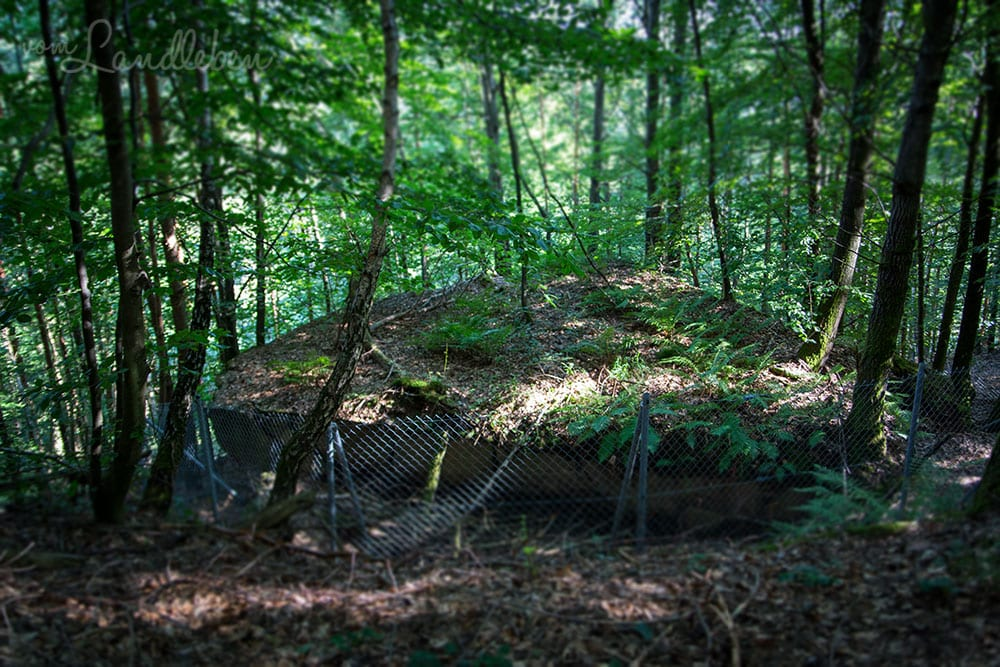 Bunkerruine am Westwall