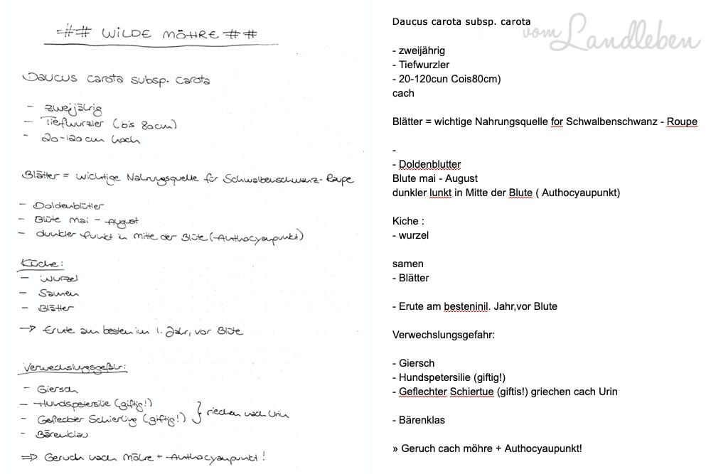 Handschriftenerkennung der Rocketbook-App