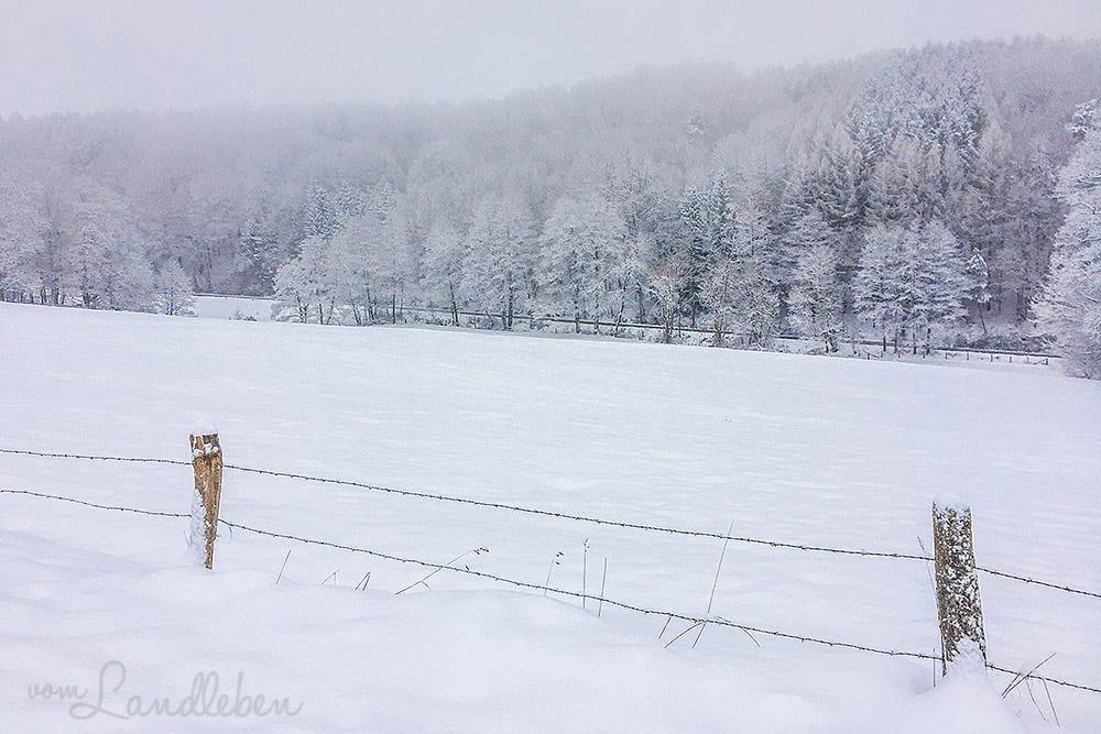 Verschneite Winterlandschaft - Imbolc