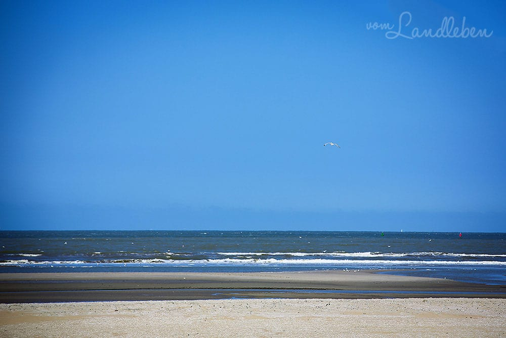 Am Strand in Ouddorp