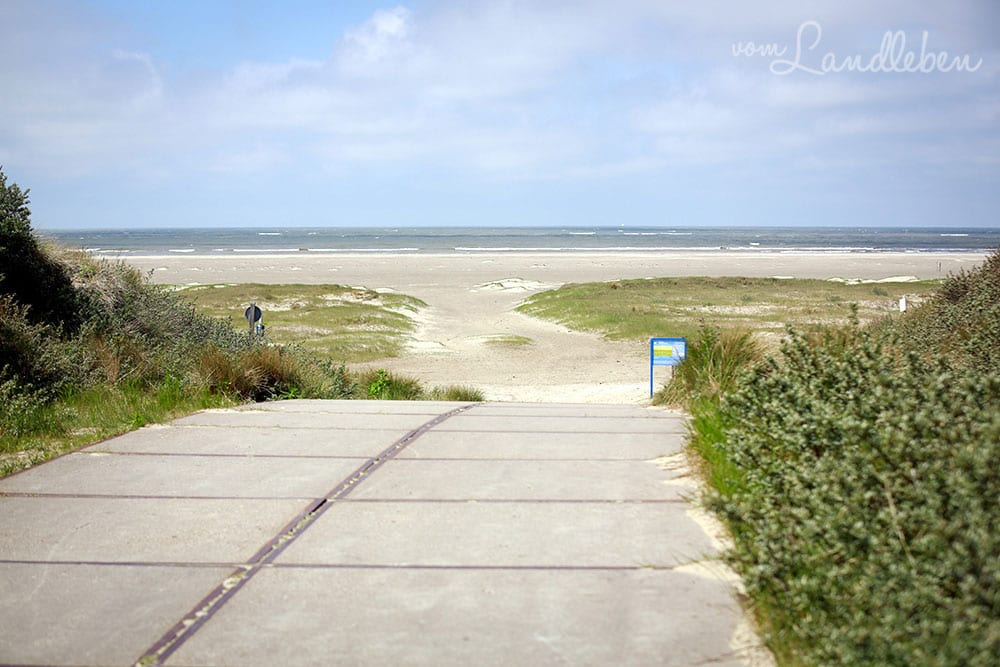 Ein Tag am Meer in Ouddorp
