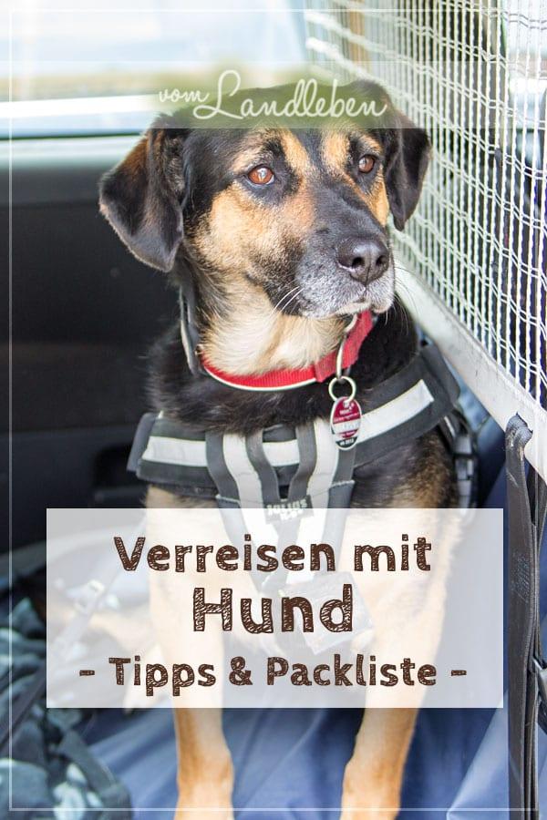 Verreisen mit Hund: Tipps und Packliste