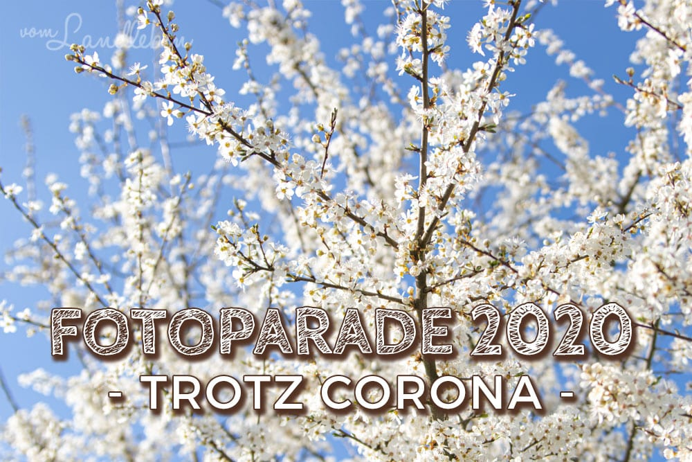 #FopaNet Fotoparade 2020 trotz Corona