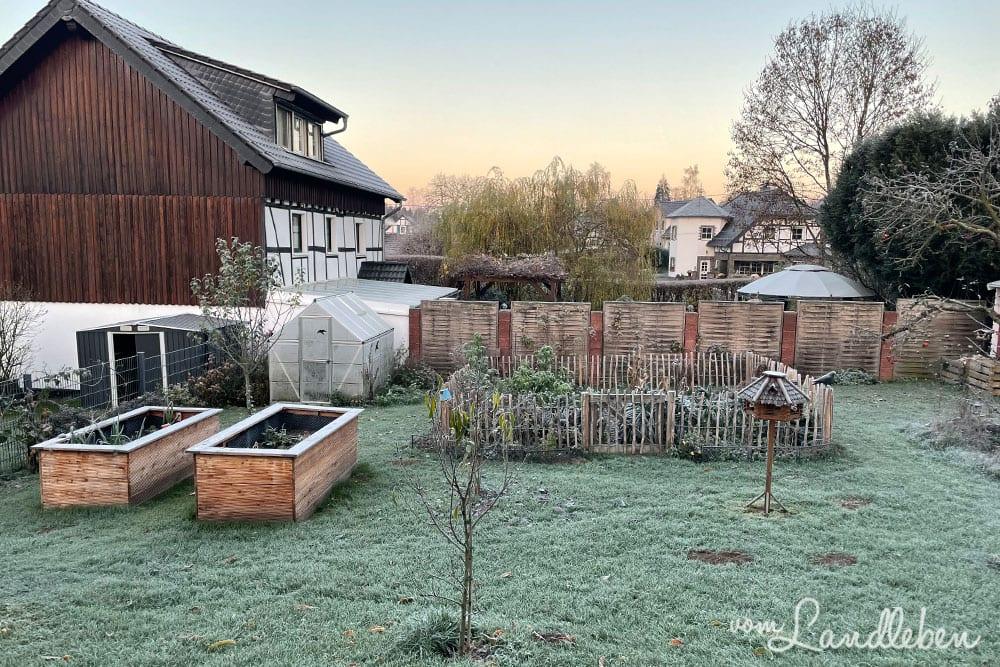 Garten im November 2020