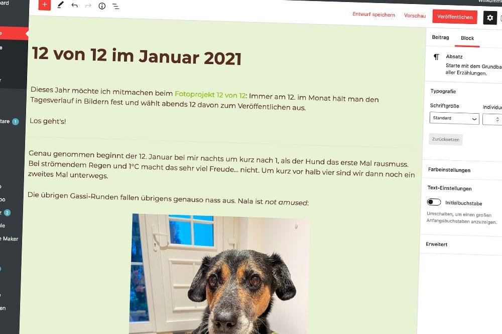 12 von 12 im Januar 2021: Bloggen