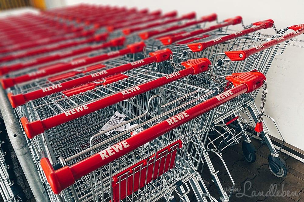 12 von 12 im Januar 2021: Einkaufen