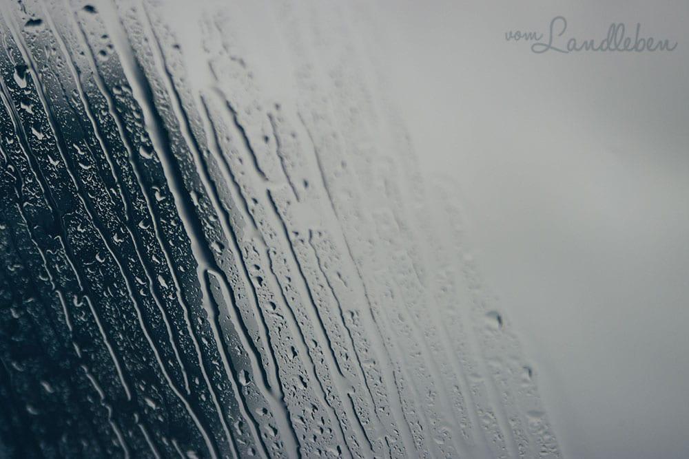 12 von 12 im Januar 2021: Regen