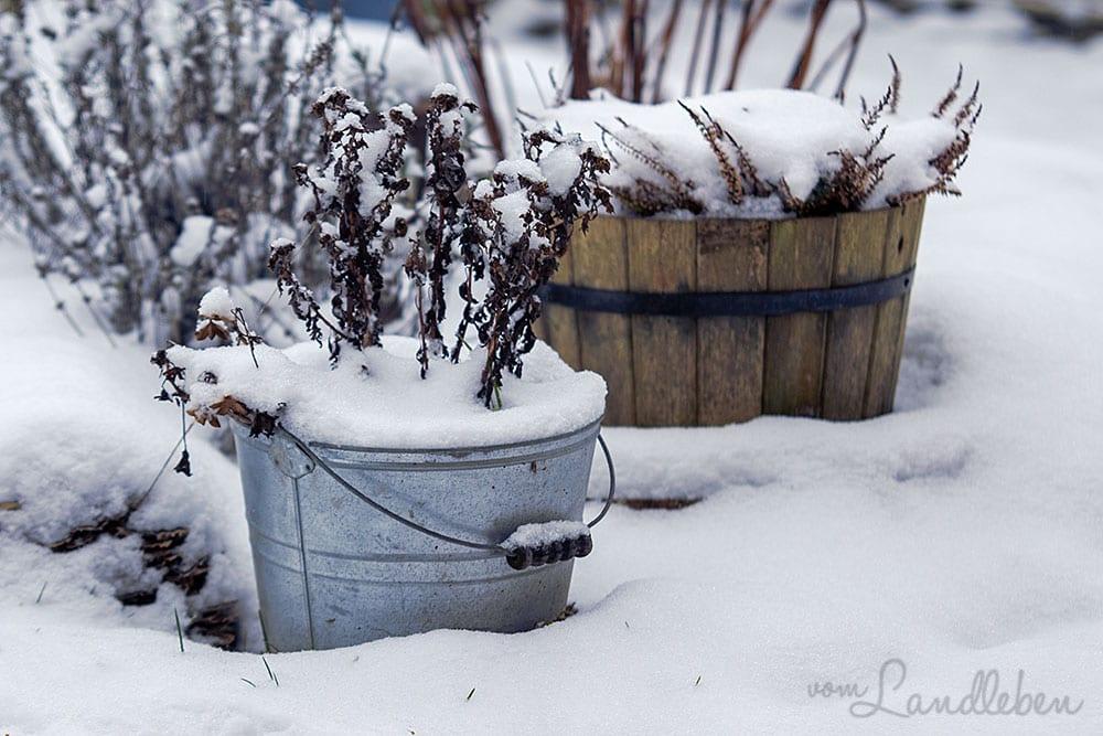 Schnee im Mittelgarten - Januar 2021