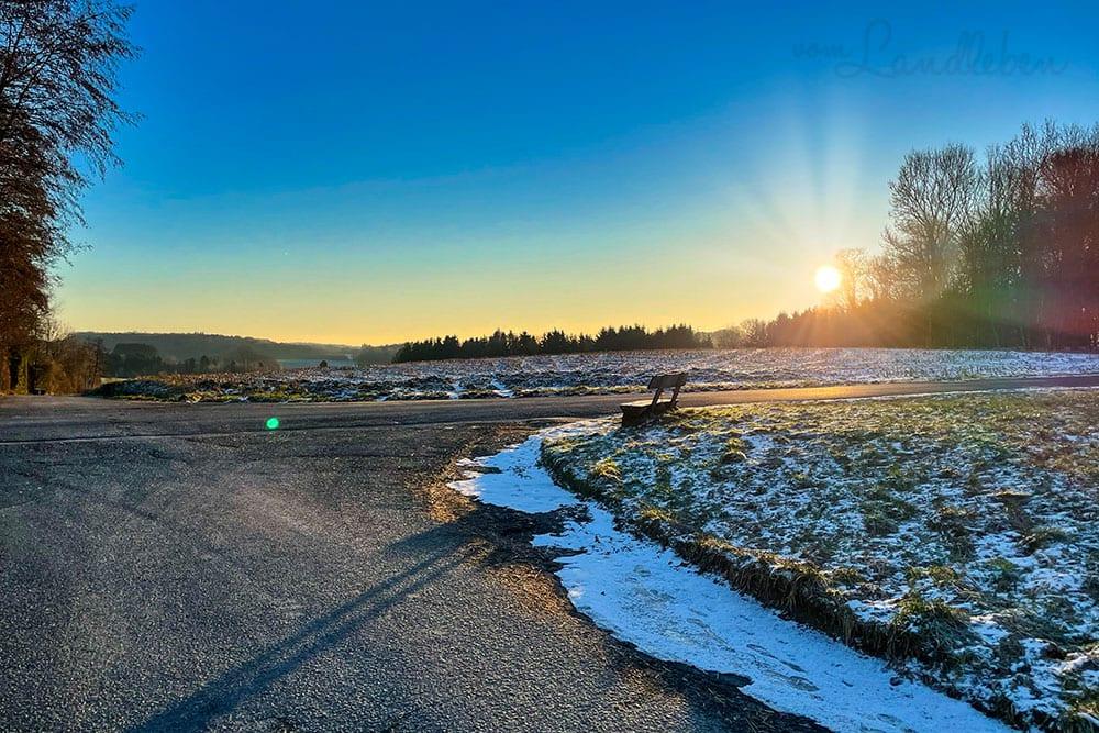 12von12 im Februar 2021 - Spaziergang bei Sonnenaufgang
