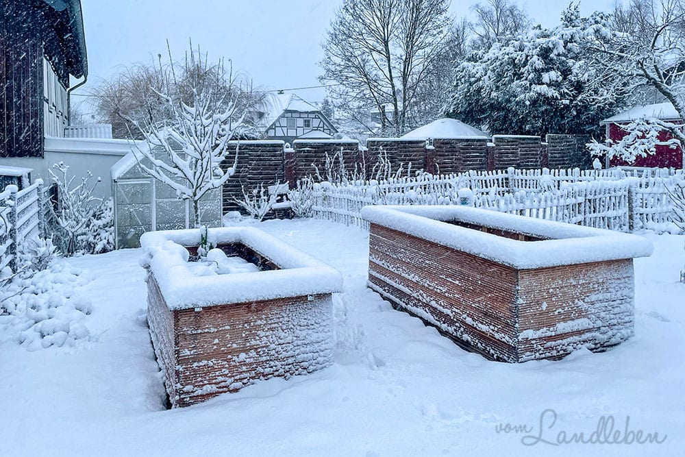 Schnee im Garten - Januar 2021