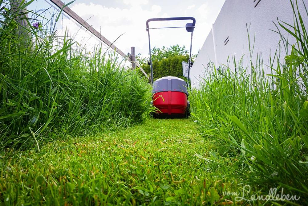 Einhell GE-CM 43 Akku-Rasenmäher
