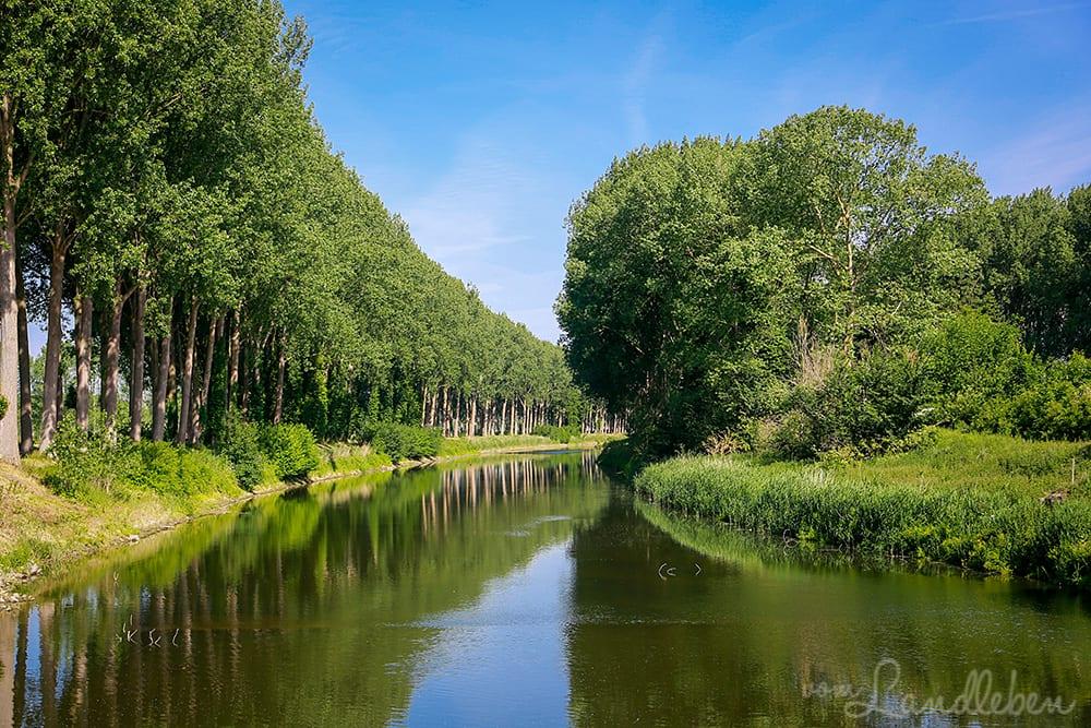 Kanal bei Damme