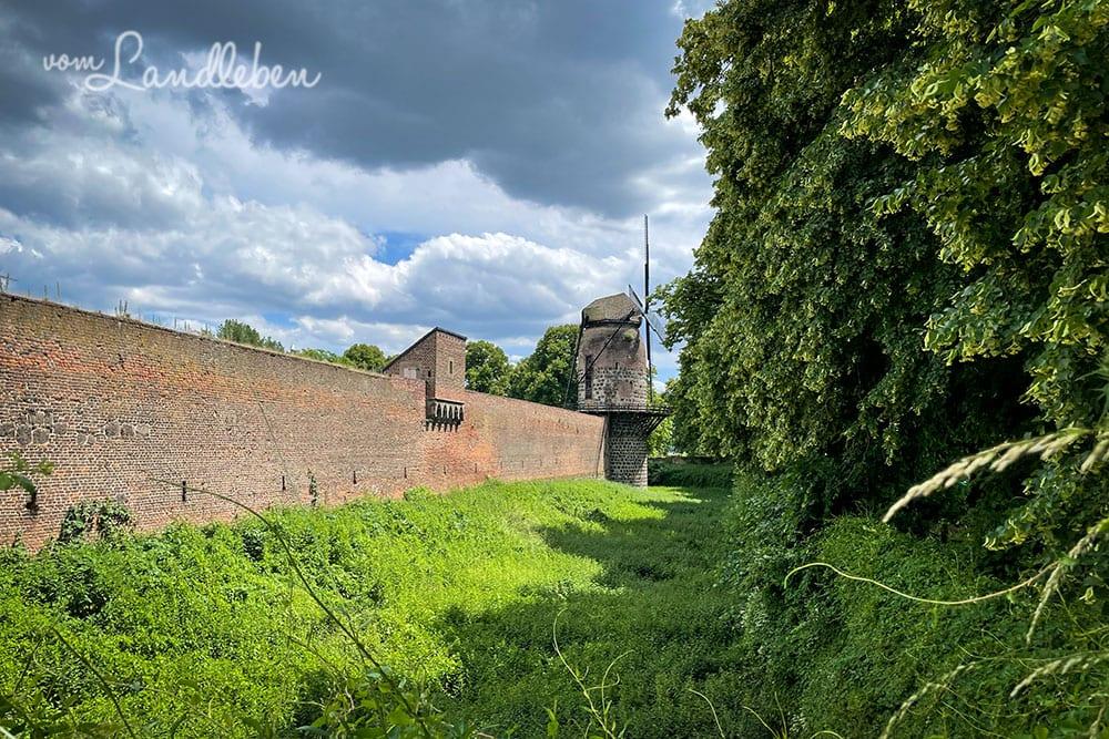 Windmühle in Zons an der Stadtmauer