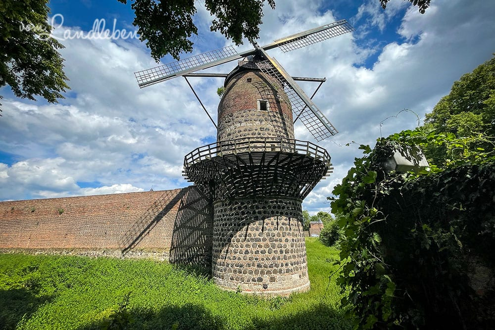 Windmühle in Zons