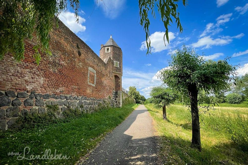 Pfefferbüchse und Stadtmauer in Zons